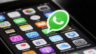 WhatsApp Down: Funny Memes and Jokes Take Over Twitter After Messaging App Faces Outage, Check Tweets