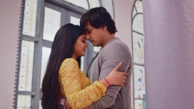 Yeh Rishta Kya Kehlata Hai January 22, 2020, Written Update Full Episode: Kartik and Naira Have a Romantic Night After the Wedding
