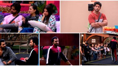 Bigg Boss 13 Day 61 Highlights: Paras Chhabra and Asim Riaz Disqualified From Captaincy Task By Bigg Boss