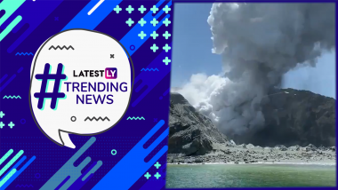 Snake Invades Cricket Pitch During Ranji Match, New Zealand's White Island Volcano Erupts And Other Trending News