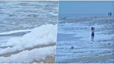 Chennai's Marina Beach Covered in Toxic Foams, Famous Tourist Spot Gets Polluted Due to Sewage Water (View Pics and Videos)