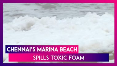 Toxic Foam Quotes Marina Beach In Chennai: Locals Enter The Waters Despite Health Hazard