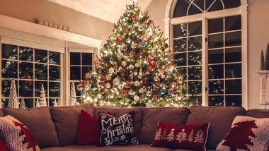 Tis the Season! Mesmerising Christmas Tree Pics That Will Get You Ready For Happy Holidays