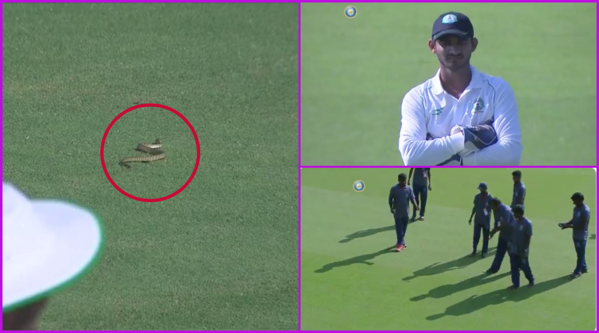 Snake Invades Pitch During Andhra Pradesh vs Vidarbha Ranji Trophy 2019-20 Match, Watch Viral Video