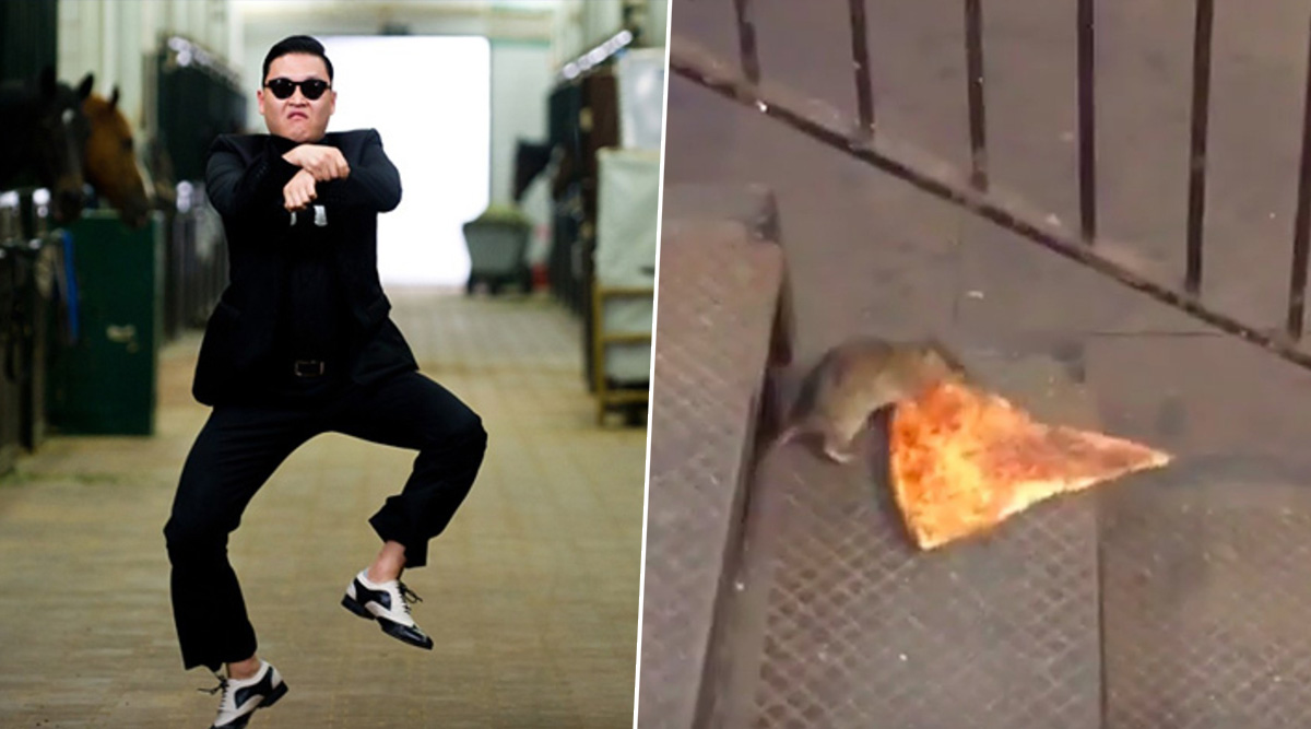 Decade Ender: Gangnam Style, Pizza Rat to Piche Toh Dekho Boy, Watch 10 Insanely Viral Videos That Enthralled the Internet in 2010–19