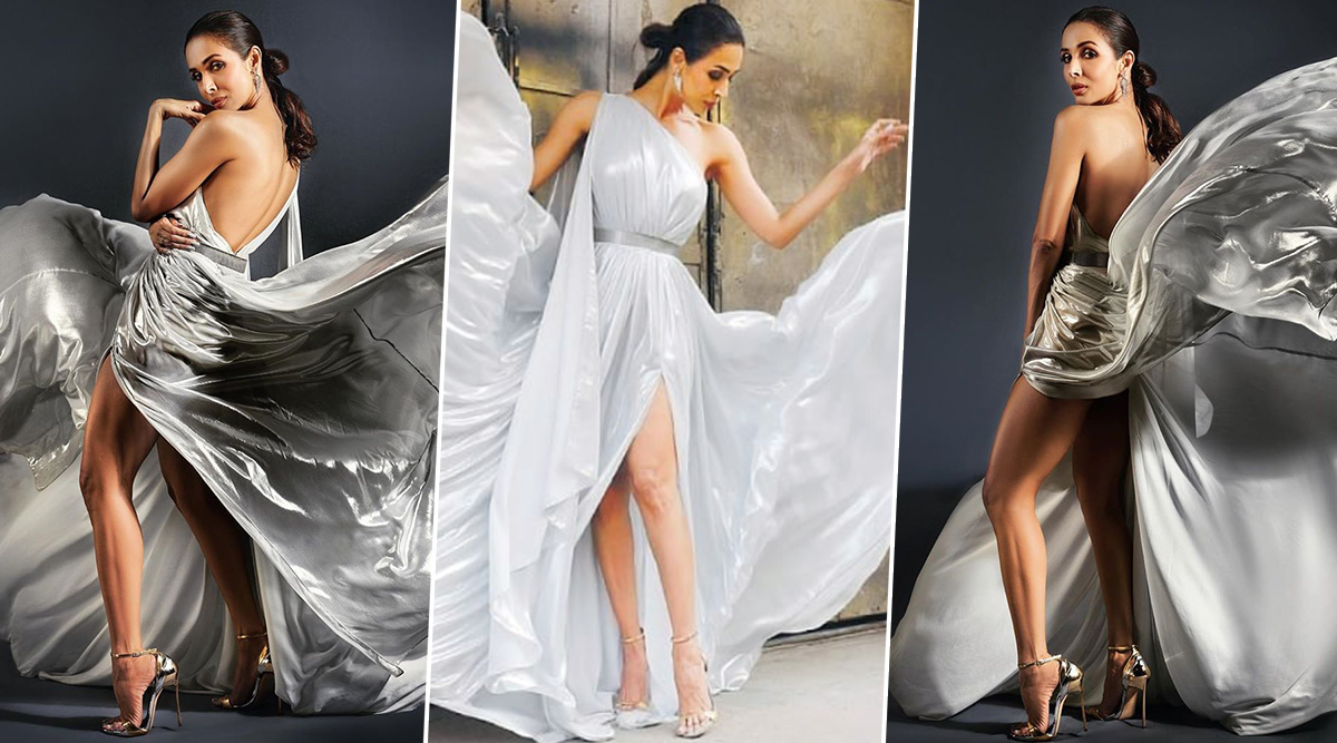 Malaika Arora Weaves Silver Magic with her Evyatar Myor Gown (View Pics)