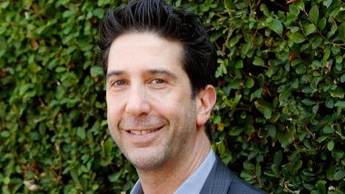 "David Schwimmer AKA Ross Geller on Friends Reunion: 'Don""t Think It""s Possible'"