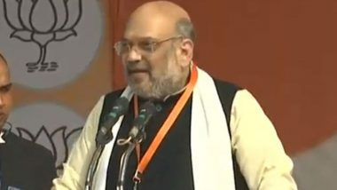 Citizenship Amendment Act Won't Be Withdrawn, No Matter Who Protests, Says Amit Shah in Lucknow