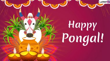 Bhogi 2020 Date & Significance: Tithi, Timings, History and Importance of the First Day of Pongal