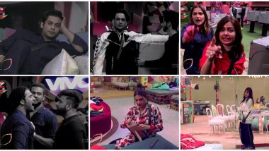 Bigg Boss 13 Day 123 Highlights: Kashmera Shah Accuses Vikas Gupta of Trying to Ruin Her Relationship With Arti Singh