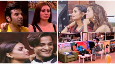 Bigg Boss 13: Vikas For Sidharth, Himanshi For Asim, Devoleena For Rashami and Shefali For Paras - These Ex Contestants To Enter The House