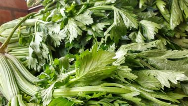 Weight Loss Tip of the Week: How to Use Celery to Lose Weight (Watch Video)