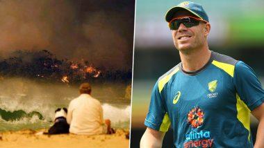 Australia Bushfires: David Warner Shares Emotional Message for Firefighters, Calls Them 'Real Heroes'