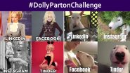 #DollyPartonChallenge Trends Online! Celebrities to Pets, Netizens Participate by Posting Funny Memes and Sexy Photos to Show Different Personalities