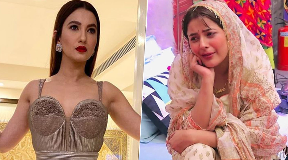Bigg Boss 13: Gauahar Khan Comes Out in Support of Shehnaaz Gill, Advises Her to 'Wake Up' and Have Some 'Self-Respect'