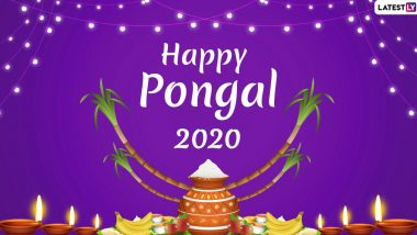 Happy Thai Pongal 2020 Images and HD Wallpapers for Free Download Online: Wish on Pongal With WhatsApp Messages, GIF Greetings and SMS on Tamil Harvest Festival