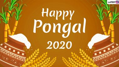 Happy Pongal 2020 Images, HD Wallpapers & Pictures for Free Download Online: Wish Thai Pongal With These Beautiful GIF Greetings, Messages & WhatsApp Stickers