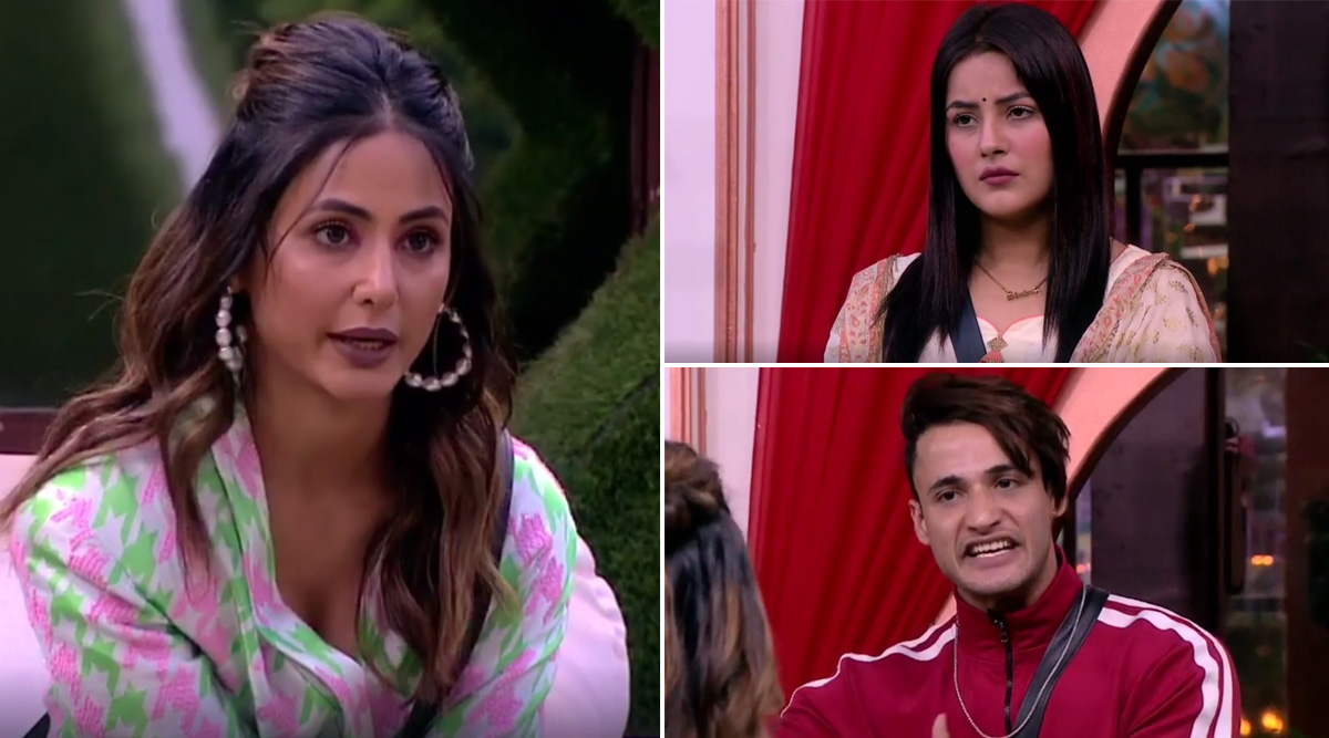 Bigg Boss 13: Asim Riaz Beats Shehnaaz Gill to Get Crowned As the First Winner of the Elite Club Task Judged by Hina Khan (View Post)