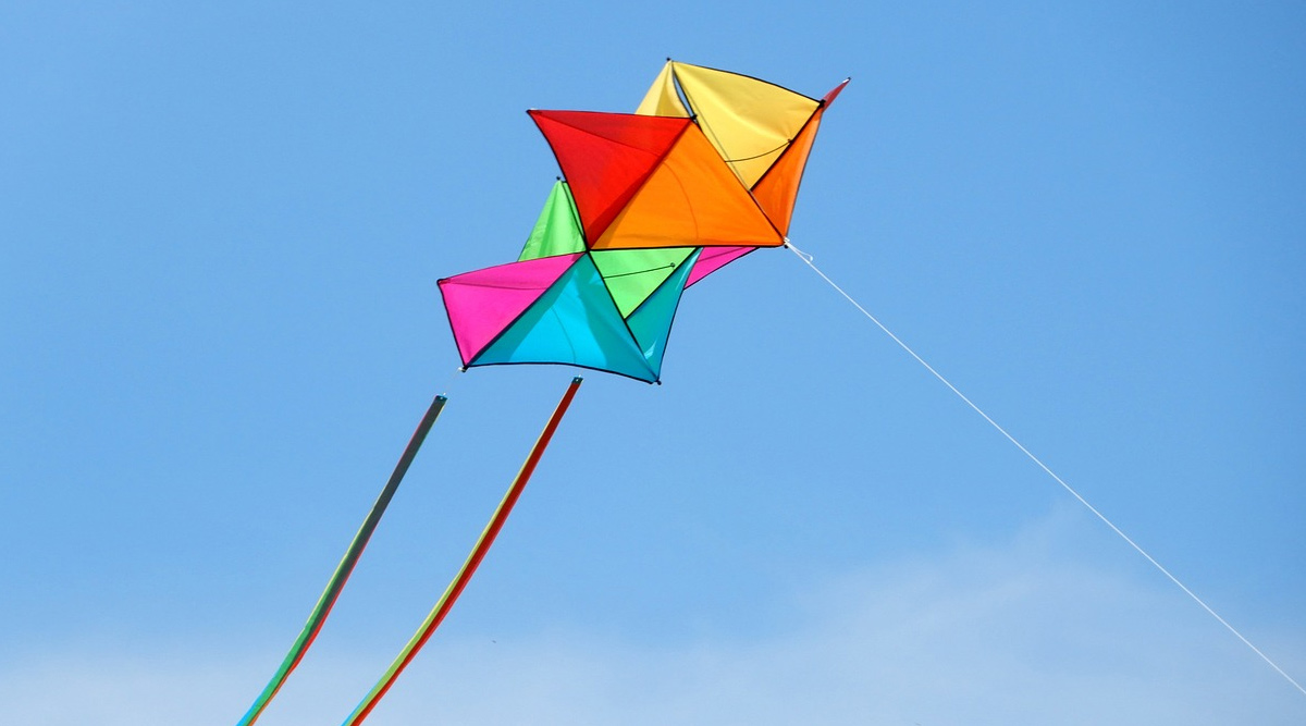 Makar Sankranti 2020: How to Fly a Kite? Easy Steps To Master Kite Flying or Patangbazi (Watch Video)