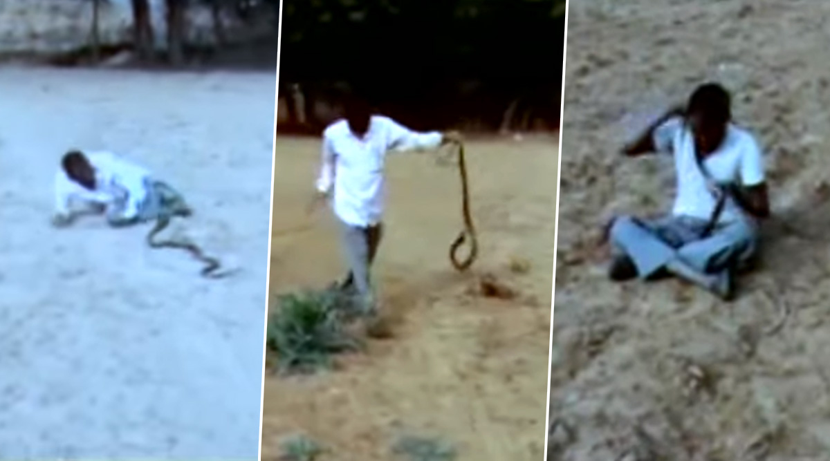 Snake-Man Wrestling: Video Shows Drunk Youth Fighting Reptile Despite Getting Repeatedly Bitten
