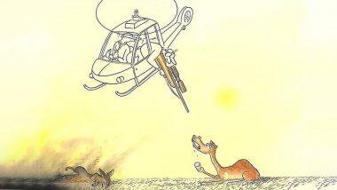 Australia Bushfires: Above 1 Billion Animals Dead, PETA Urges Govt to Take Down Decision to Kill 10,000 Camels As It Won't Solve Wildfire Crisis (Check Tweet)