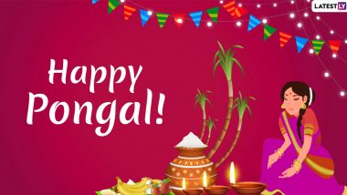 Happy Pongal 2020 Greetings & Images: Mattu Pongal WhatsApp Stickers, Hike GIF Messages, SMS and Quotes to Celebrate Tamil Nadu Harvest Festival