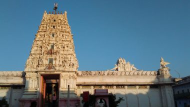 Basant Panchami 2020: Five Saraswati Temples in India You Must Visit to Celebrate The Festival of Vasant Panchami