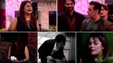 Bigg Boss 13: Shehnaaz Gill's Crying and Sobbing in Front of Salman Khan Was NOT FAKE, Declare Fans (Poll Result Inside)