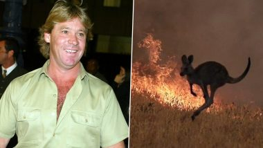 Australia Bushfires: Animated Sketch of Steve Irwin Welcoming All Dead Animals to Heaven Will Tug Your Heartstrings (View Viral Pic)