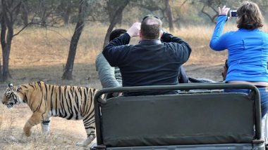 Travel Tip of the Week: Top Jungle Safari Destinations in India to Experience The Best of Wildlife