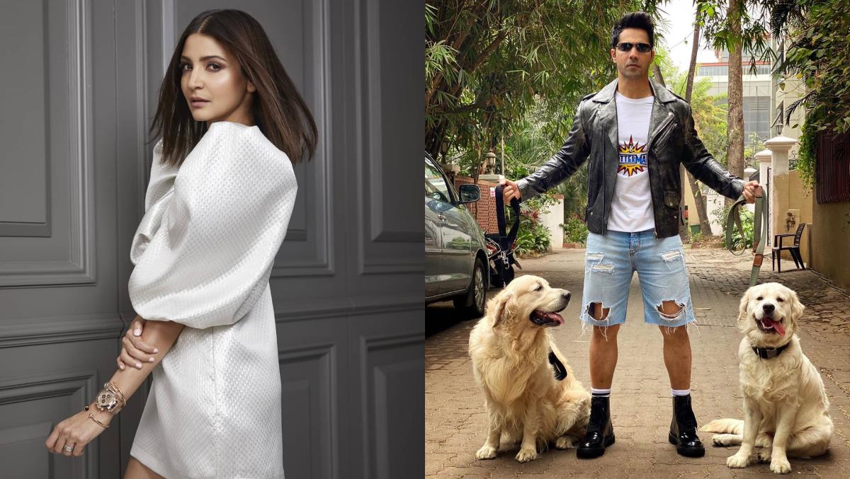 Anushka Sharma Takes A Dig At Varun Dhawan's Ripped Shorts, Asks If Dogs Bit Them Off (See Pic)