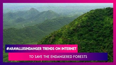 #AravallisInDanger Trends: Here's Everything You Need To Know About The Endangered Forests