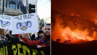 Australia Bushfire Crisis Fuels Mass Protests Demanding Immediate Action on Climate Change, Watch Videos