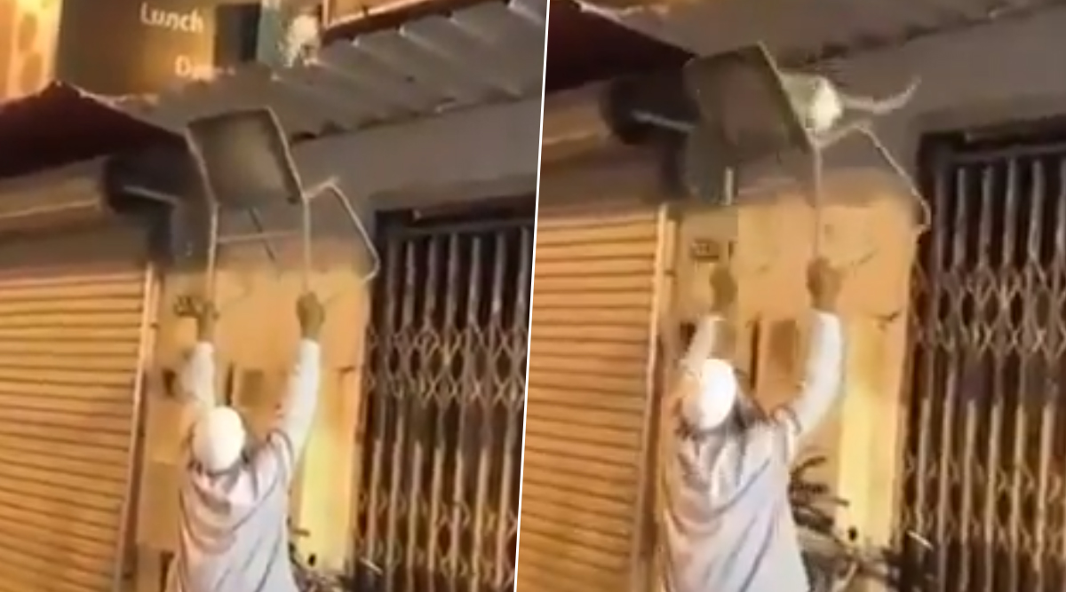 Cat Rescued by Elderly Man From Rooftop of Shop, Adorable Video Wins Hearts on the Internet