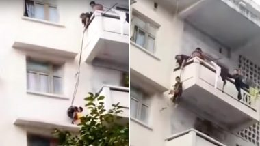 Grandma Dangles 7-YO Grandson From 50-Feet-High Balcony by Rope to Rescue Her Trapped Cat, Watch Viral Video