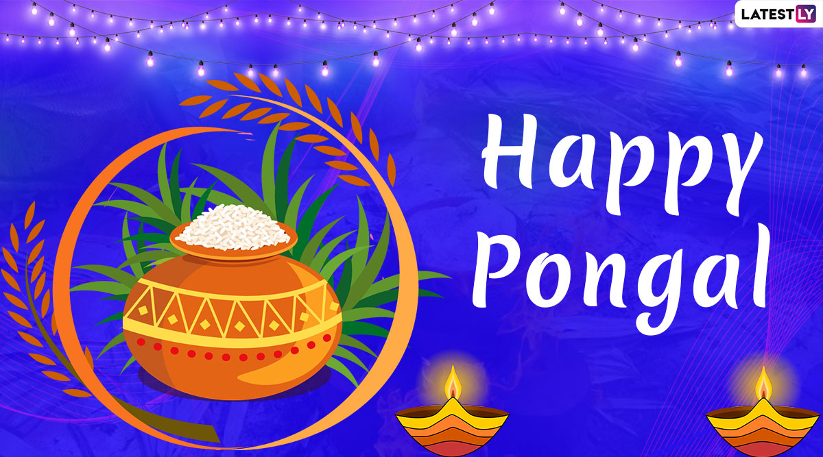 Pongal 2020 Date and Shubh Muhurat: History, Significance, Thai Pongal Rituals and Celebrations of the Annual Tamil Festival