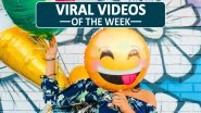 Viral Videos of the Week: From NYC Toddler Besties Maxwell and Finnegan With Face Masks On to 'Charlie Bit My Finger' Siblings, Watch 7 Clips That Spread Joy on the Internet