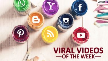 Viral Videos of the Week: Google 3D Animals to Dalgona Coffee, 7 Trends and Clips That Shows How Netizens Are Spending Their Quarantine