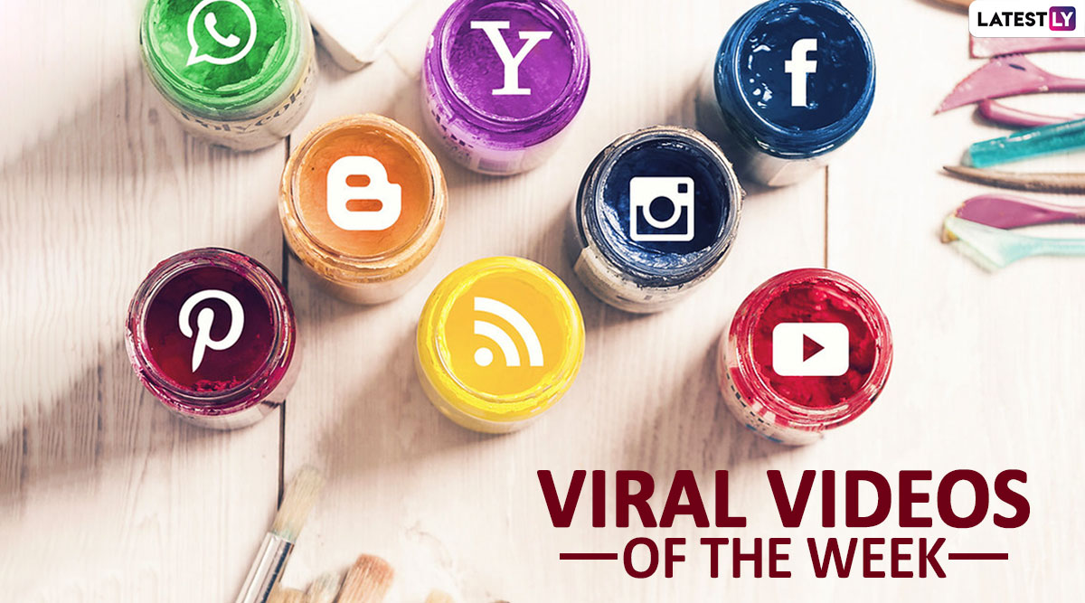 Viral Videos of the Week: From Yellow Green Puppy 'Hulk' to Guys Coating Their Testicles in Soy Sauce, Watch 7 Clips That Broke the Internet