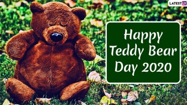 Happy Teddy Bear Day 2020 Images & HD Wallpapers for Free Download Online: Wish on Fourth Day of Valentine Week With WhatsApp Stickers and Greetings