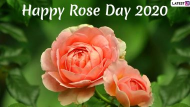 rose day hd images and for wife husband