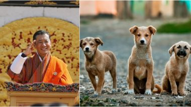 Bhutan PM Urges Citizens to Adopt Stray Dogs And Plant Trees as Birthday Gift for 'King' (See Pictures)