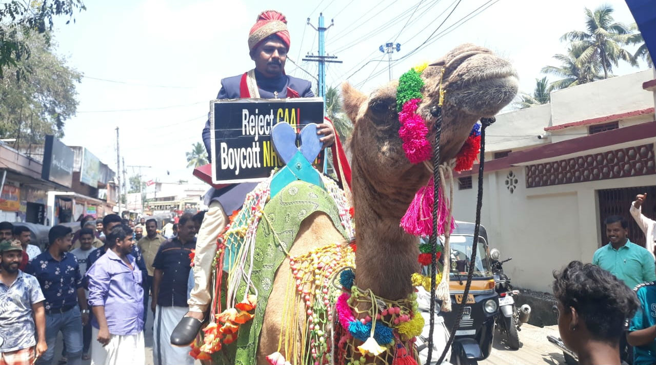 Kerala Groom Arrives on Camel Holding Anti-CAA Poster in His Hands, Gifts Copy of Constitution to Bride