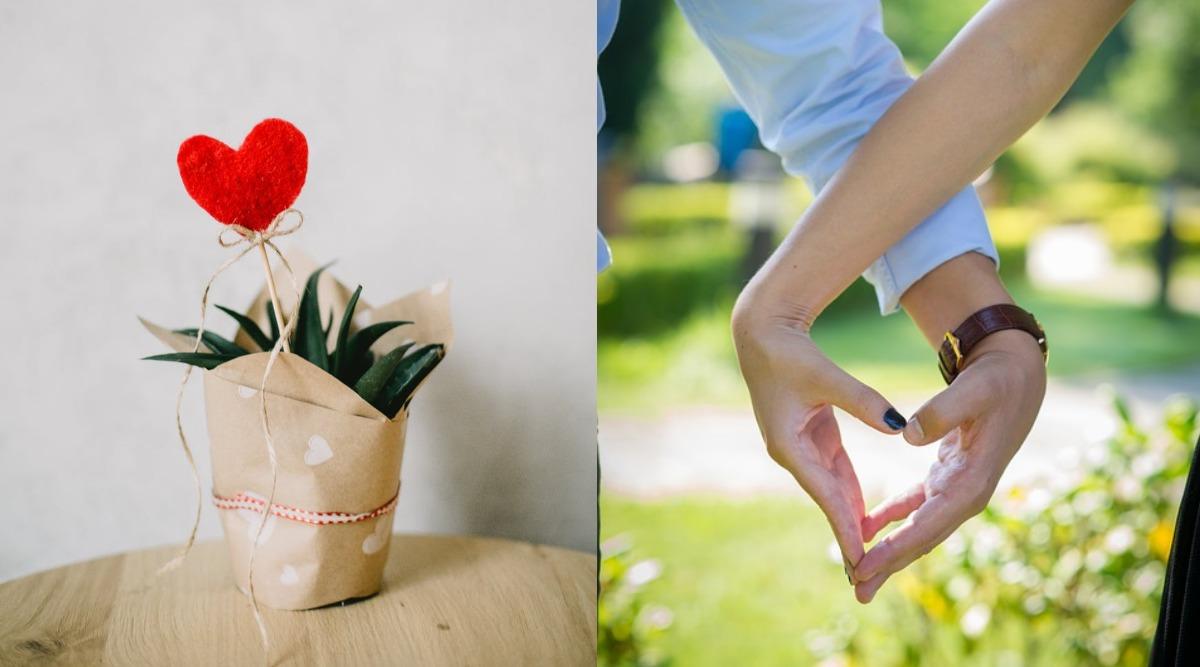 On Valentine's Day, Lovebirds in Patna May Exchange 'Pyaar Ka Paudha'