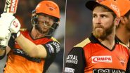 Dream11 IPL 2020 Diaries: David Warner & Kane Williamson Enjoy Playing Dart Game Ahead of SRH vs RCB Match (Watch Video)