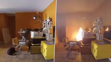 Dog Knocks Over Ironing Board And Starts Fire at Home in New Mexico (Watch Video)
