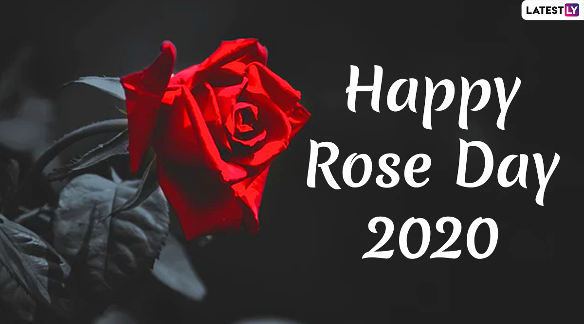 Happy Rose Day 2020 Images Hd Wallpapers For Free Download