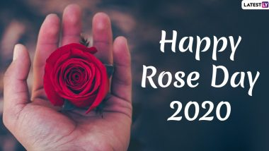 Rose Day Images & HD Wallpapers For Free Download Online: Wish Happy Rose Day 2020 With Beautiful Photos, WhatsApp Stickers and GIF Greetings