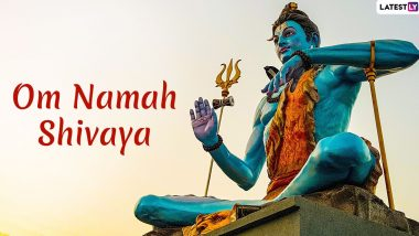 Mahashivratri 2020 Hindi Quotes and Images: Sayings on Lord Shiv Shankar, WhatsApp Messages, GIF Images And Greetings to Download For Free And Share