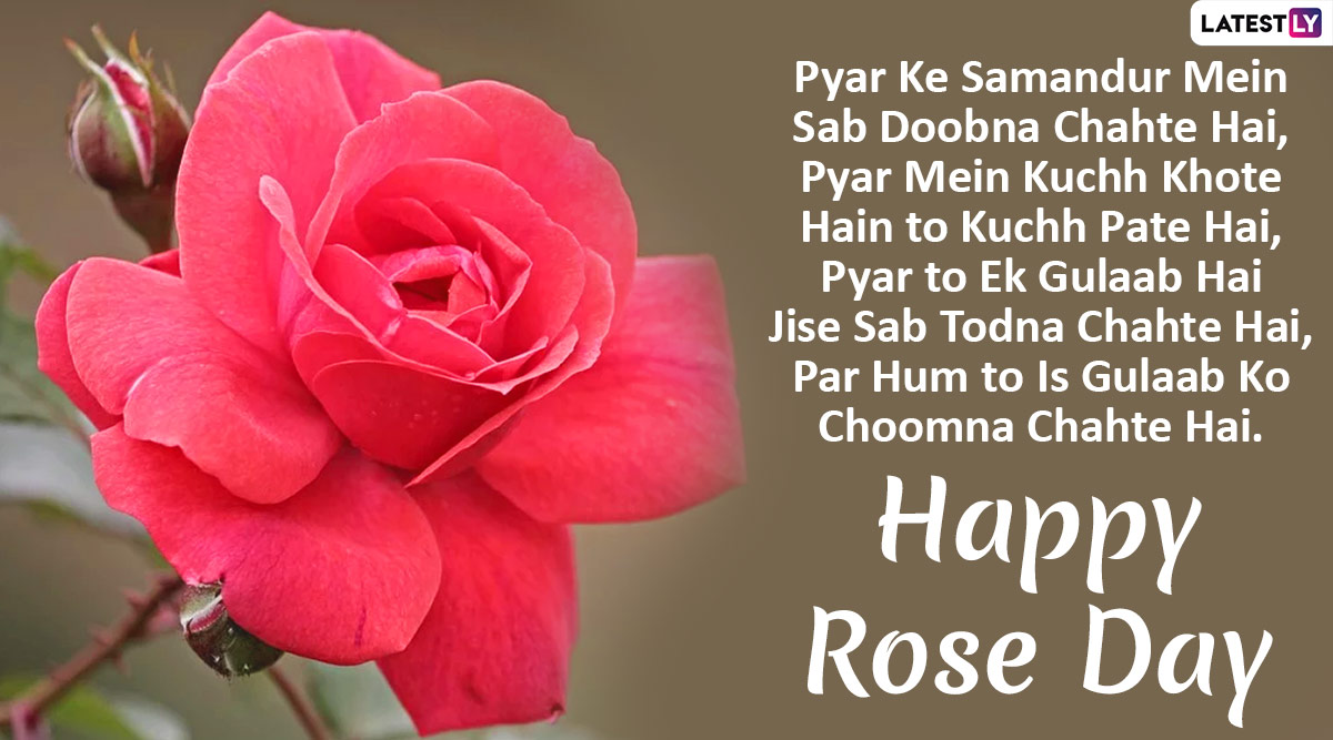 Rose Day 2020 Shayari Messages In Hindi Whatsapp Stickers Sms